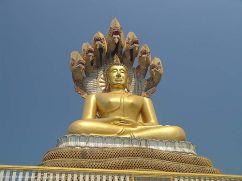 18321605-buddha-seven-headed-mucalinda-snake-naga-thailand