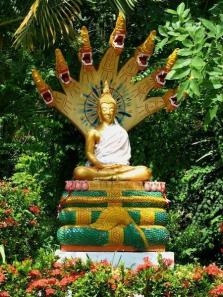 570978-Buddha-and-Mucalinda-1