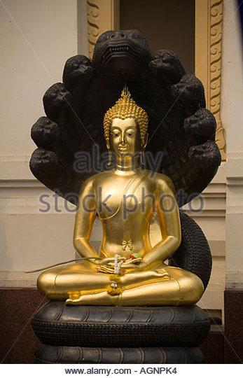 meditating-buddha-protected-by-mucalinda-wat-suthat-bangkok-thailand-agnpk4