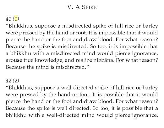 FireShot Capture 36 - The Numerical Discourses of the Buddha_ A Co_ - https___books.google.com_books